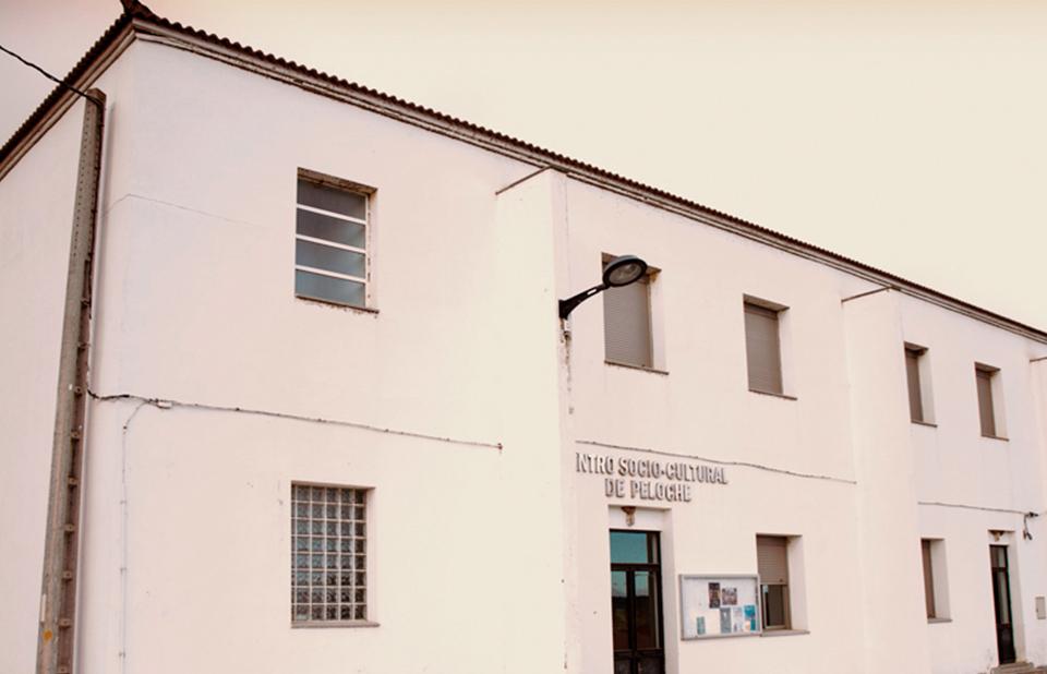 centro cultural quinto pino peloche