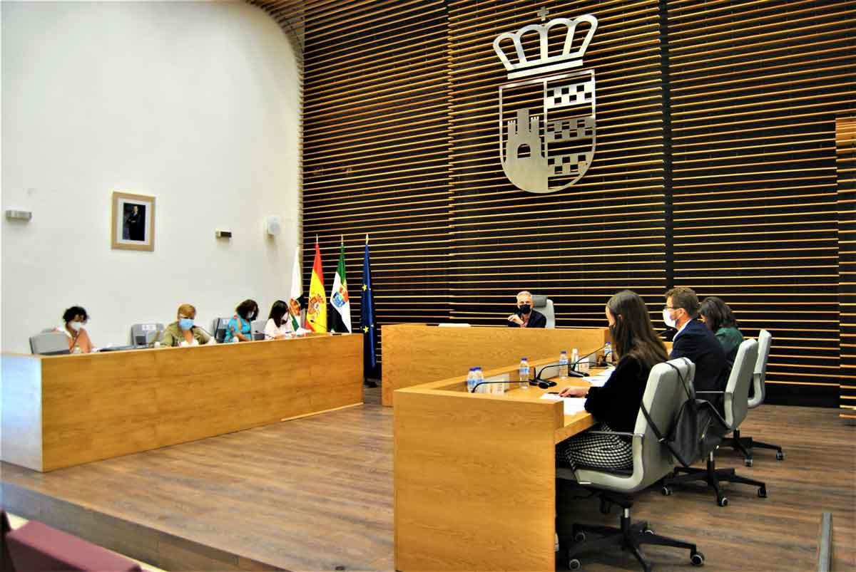 Crónica del Pleno Ordinario 30/09/2021